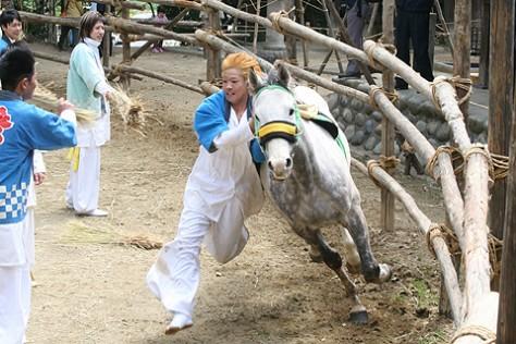半月七社神社おまんと祭り