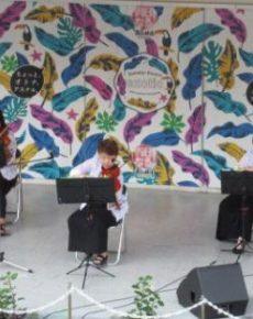 すくすく合奏団 ヴァイオリンコンサート