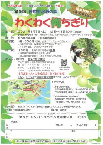 わくわく梅ちぎり~愛知県内一の梅林に実る「佐布里梅」の収穫を体験