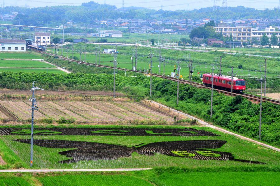 電車と田園風景1