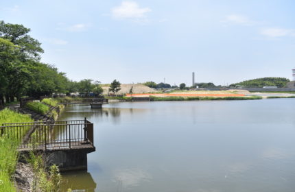 白魦池(しらはいけ)