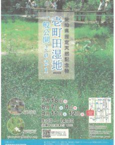 壱町田湿地植物群落一般公開